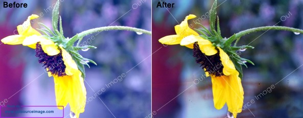 Digital image enhancement services